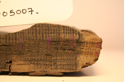fig. 117 closeup of the plank with sapwood photo Aoife Daly
